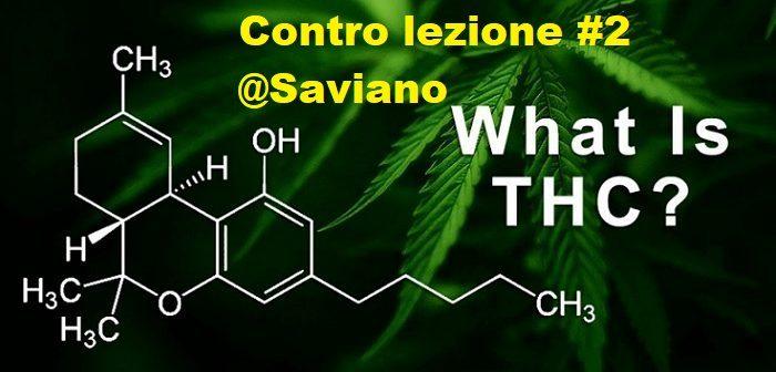 Contro lezione sulla cannabis#2: proibire funziona