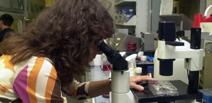 Omofobia, la legge ostacola la ricerca scientifica