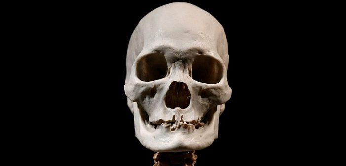 Record fossile relativo datazione