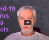 Covid-19 il virus della scuola